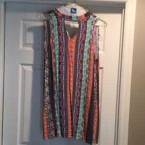 Sleeveless Dress worn once